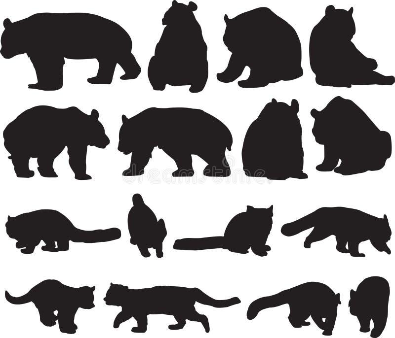 Гигантская панда и красная панда или меньший контур силуэта панды иллюстрация вектора