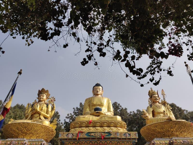 Гигантская статуя Gautam Будды стоковое изображение rf