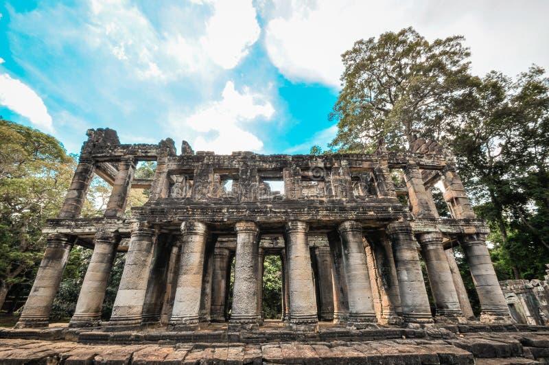 Гигантский висок выпускного вечера и Angkor Wat животиков заволакивания дерева, Siem Reap, Ca стоковое изображение