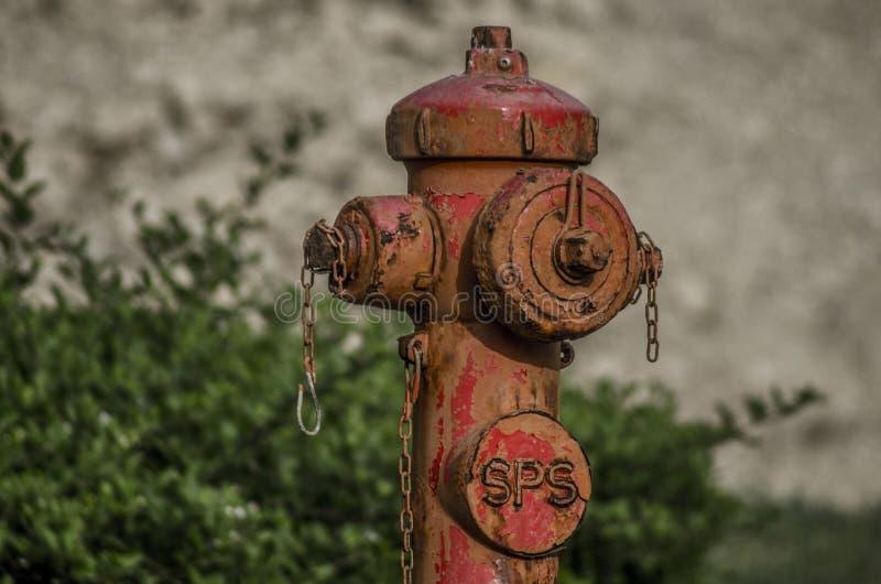 Гидрант в KFUPM стоковая фотография rf