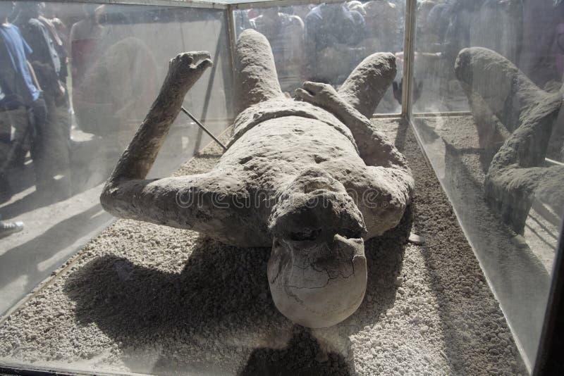 гипсолит pompeii бросания тела стоковое изображение