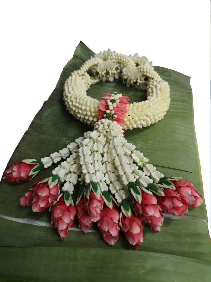 Гирлянда сделанная жасмина, розы, Дня матери giantea Calotropis цветка кроны стоковое изображение