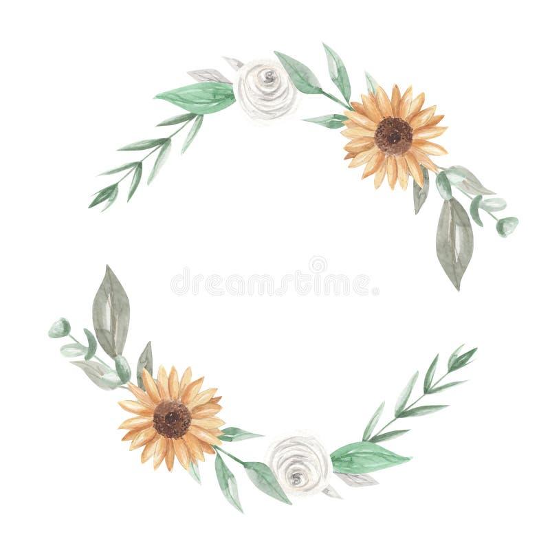 Гирлянда Clipart венка акварели солнцецветов цветет белые розы бесплатная иллюстрация