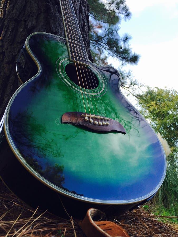 Гитара природы стоковое изображение rf