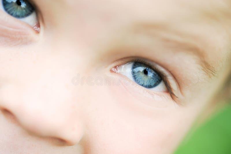 Глаза малыша макроса стоковые фото