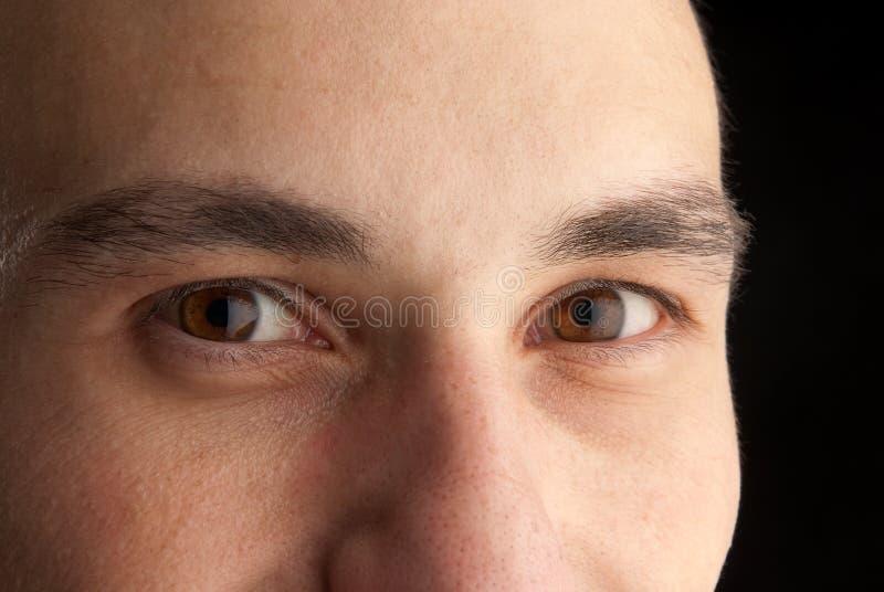 глаза укомплектовывают личным составом детенышей стоковое фото