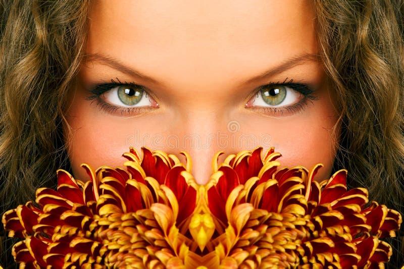 глаза стоковое фото
