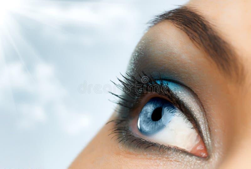 глаз красотки стоковые изображения rf