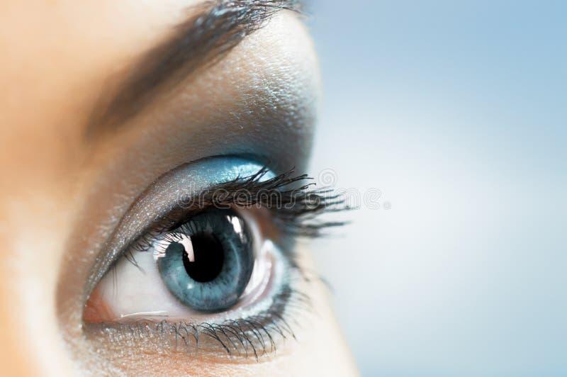 глаз красотки стоковое фото rf