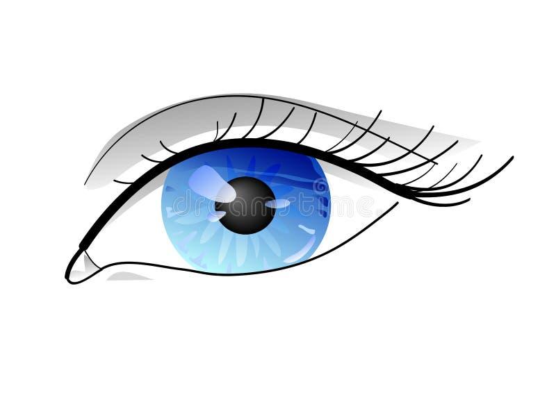 глаз сини близкий вверх иллюстрация вектора
