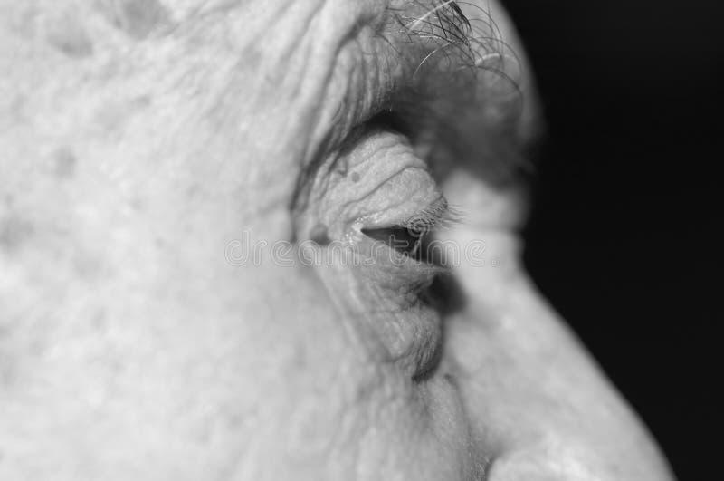 глаз старый стоковая фотография