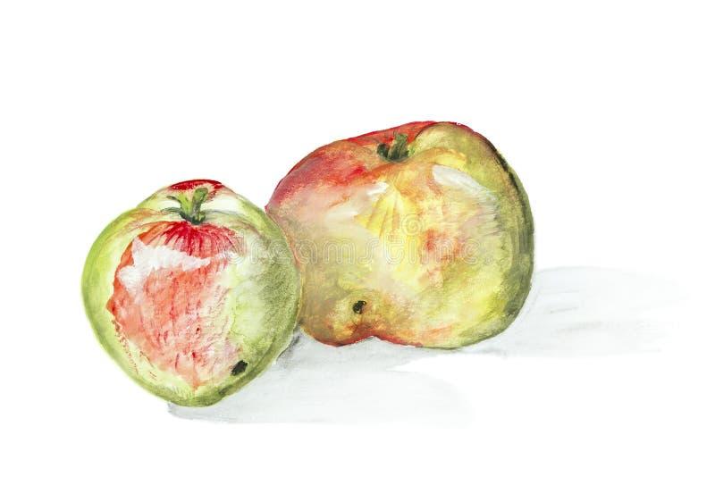 Глист-съеденная изолированная принципиальная схема яблок бесплатная иллюстрация