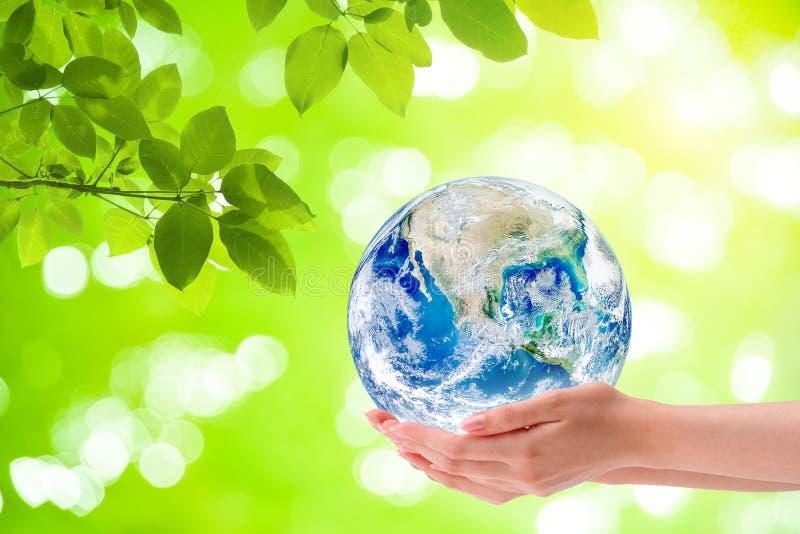 Глобус земли планеты удерживания руки женщины с зеленое естественным в предпосылке стоковое изображение