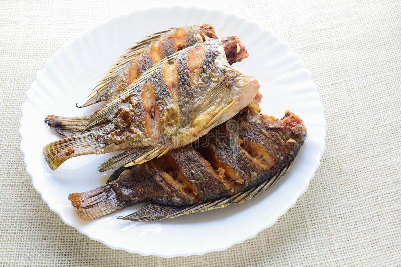 Глубокие зажаренные рыбы тилапии стоковые фотографии rf