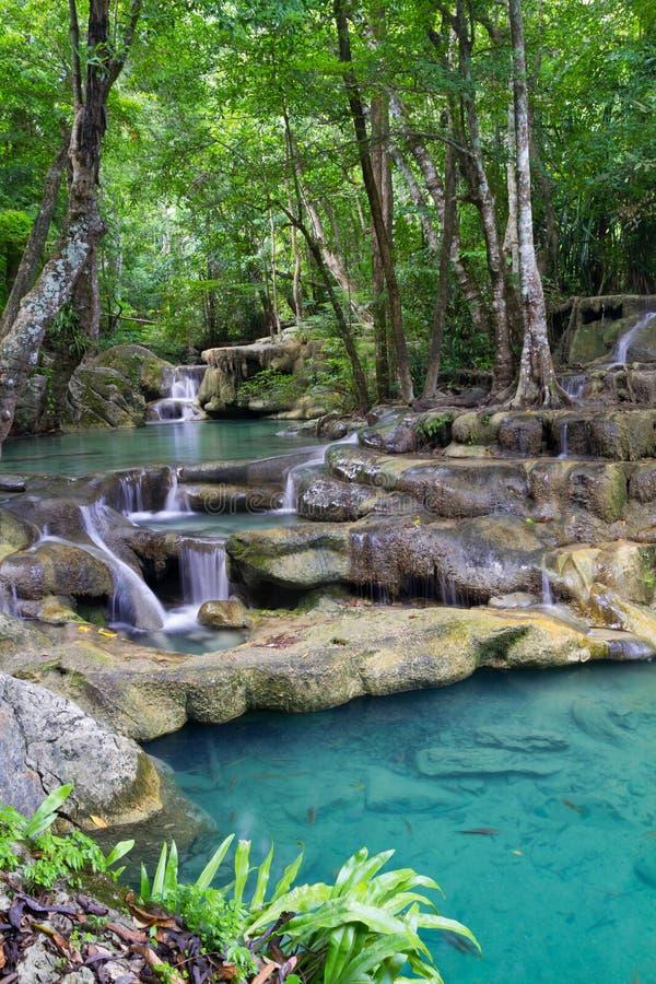 глубокий erawan водопад пущи стоковые изображения