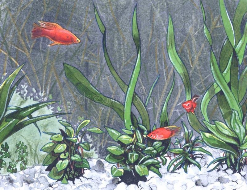 глубокий underwater иллюстрация штока