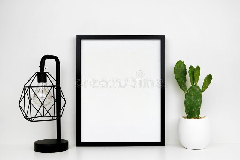 Глумитесь вверх по черной рамке, заводу кактуса и промышленной лампе стиля на белой полке или столу против белой стены стоковое изображение rf