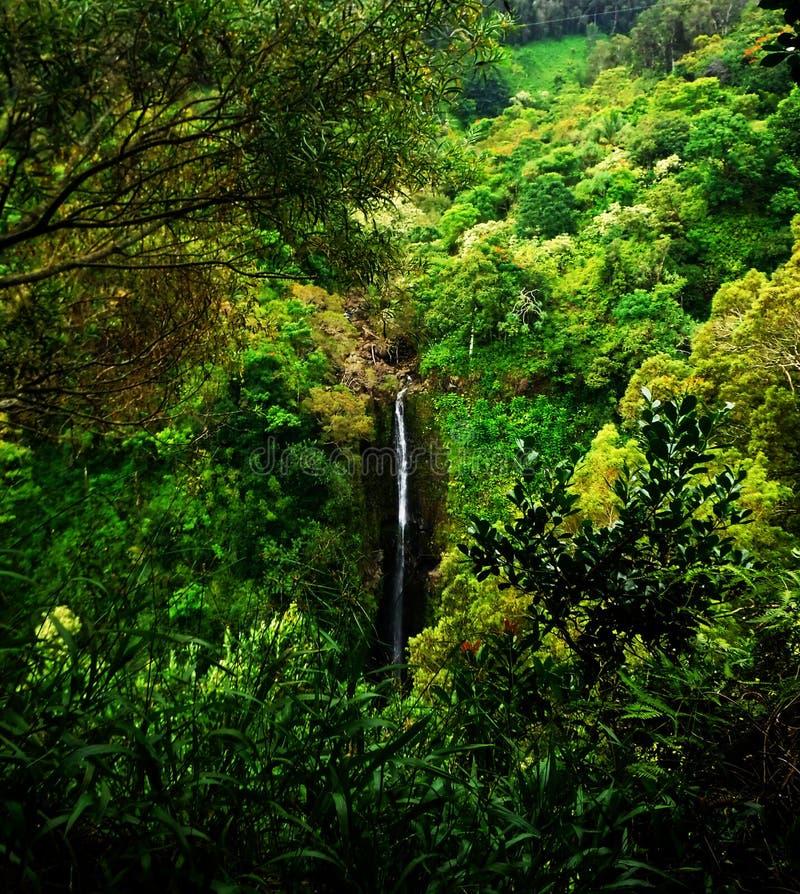 Гнать водопады стоковые изображения