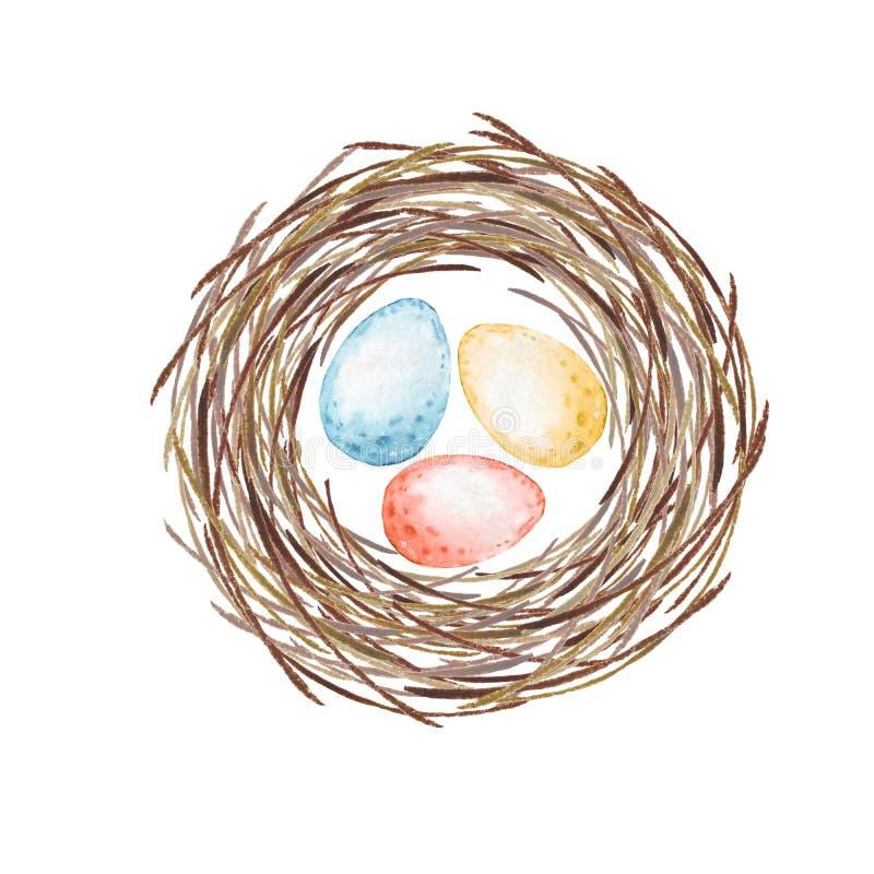 Гнездй птиц с яичками акварель иллюстрация вектора