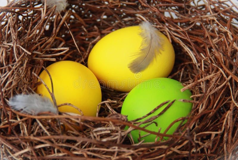Гнездй с пасхальными яйцами стоковые изображения rf