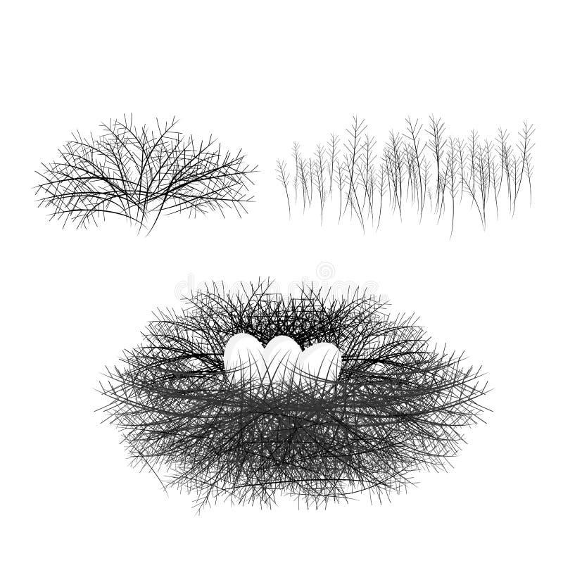 Гнездо с ветвями, карта птицы яйца, яйца в корзине, ветвь, пасхальные яйца E бесплатная иллюстрация