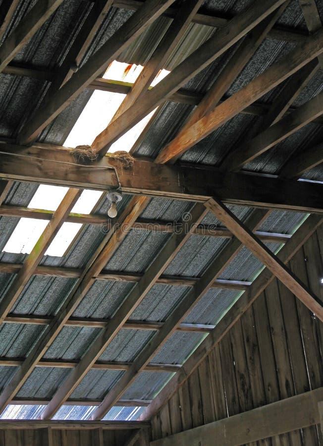 Гнезда ласточки в амбаре стоковые изображения
