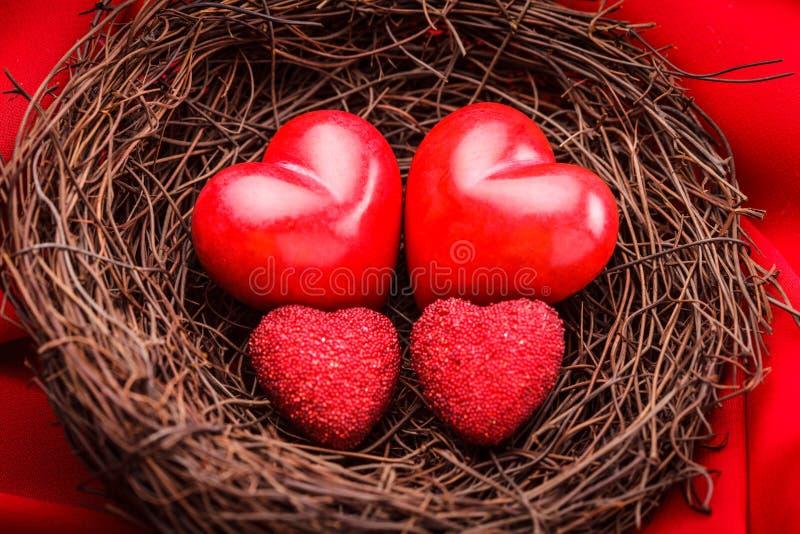 Гнездй с сердцами стоковые фото