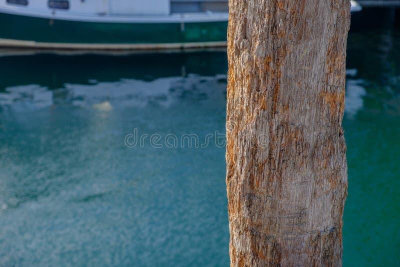 Гнить деревянная штабелевка пристани стоковое изображение rf