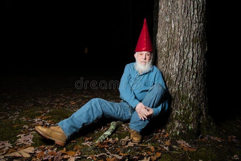 Гном под деревом 6 стоковая фотография