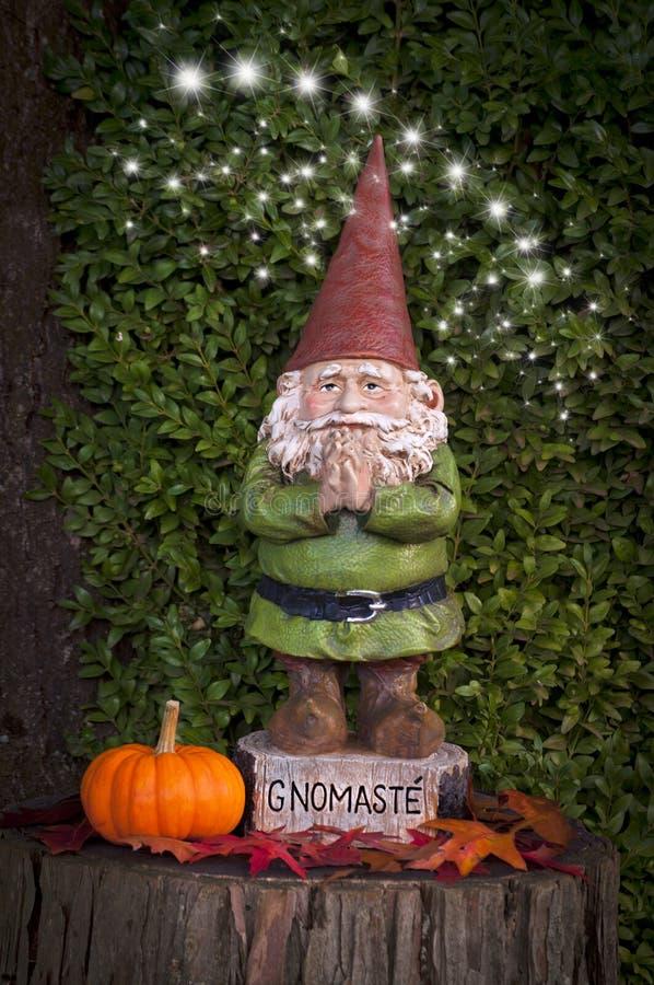 Гном с тыквой на пне дерева с феями и словом Gnomaste стоковая фотография