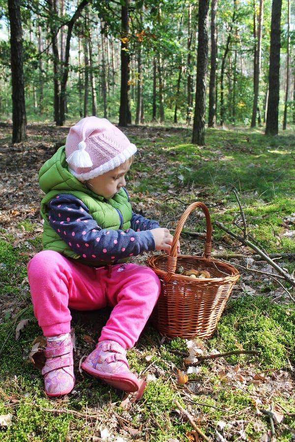 2 года старой девушки с корзиной полной грибов стоковые фото