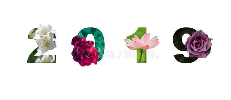 Годовщина 2019 алфавита шрифта цветка С Новым Годом! отпраздновать d стоковые фото