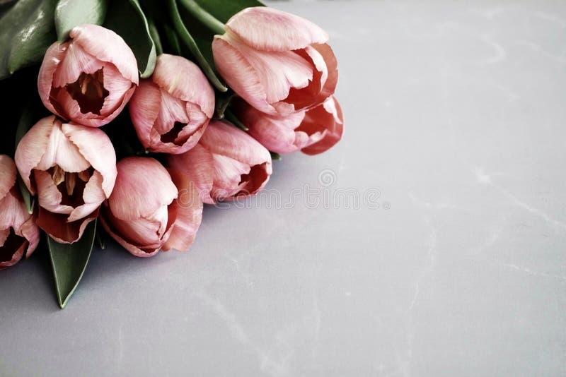 Год сбора винограда предпосылки тюльпанов иллюстрация штока