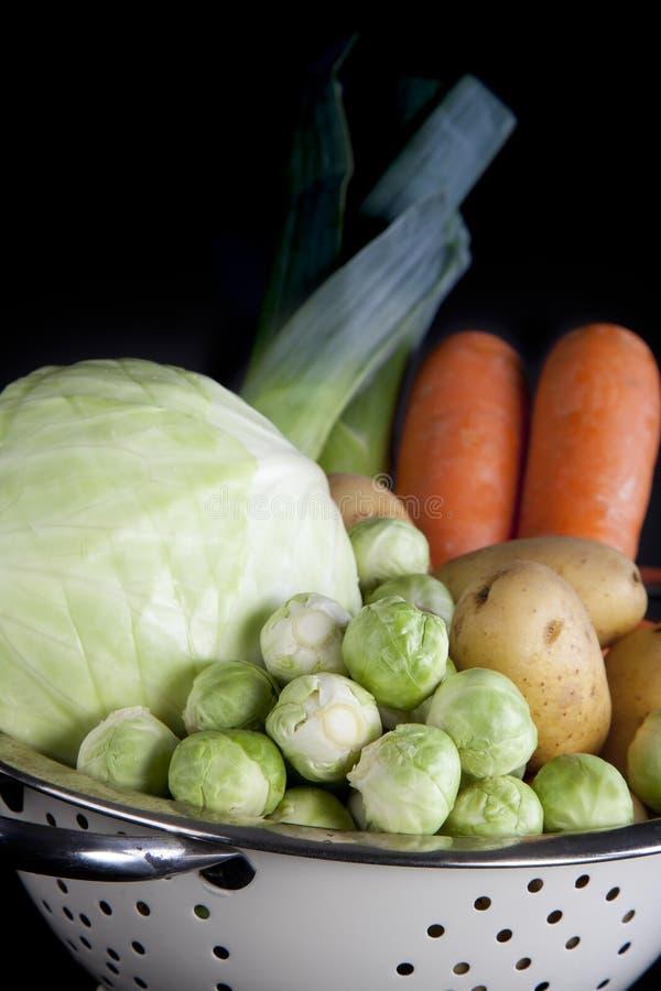 голландская зима вертикали овощей стоковые изображения