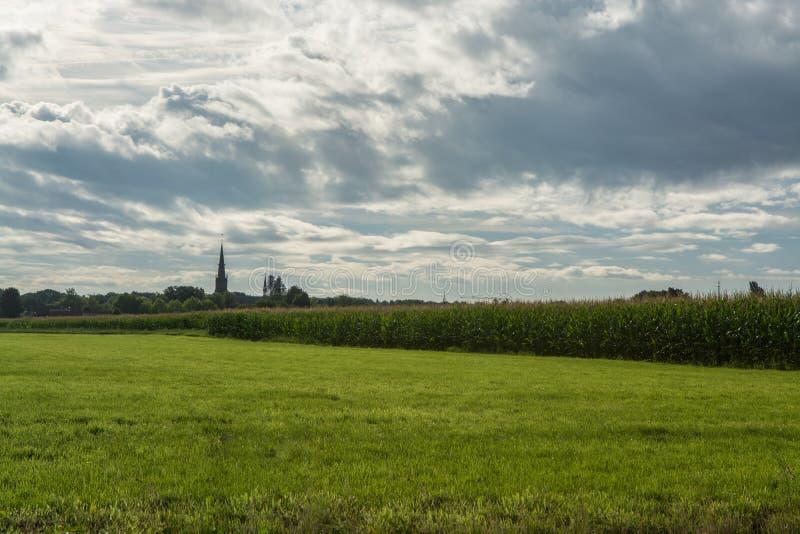 Голландская обрабатываемая земля, ландшафт с старой башней церков и кукурузные поля стоковая фотография rf