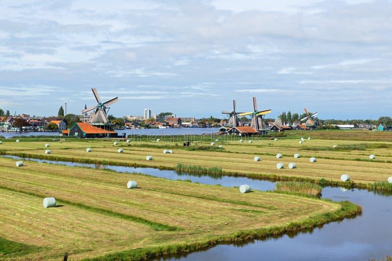 Голландские ветряные мельницы в Нидерландах закрыли видео стоковые изображения rf