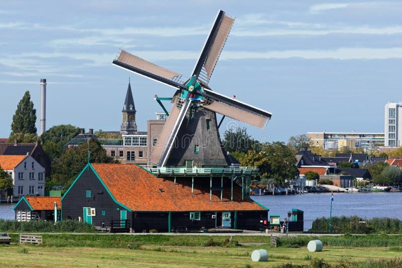 Голландские ветряные мельницы в Нидерландах закрыли видео стоковая фотография rf