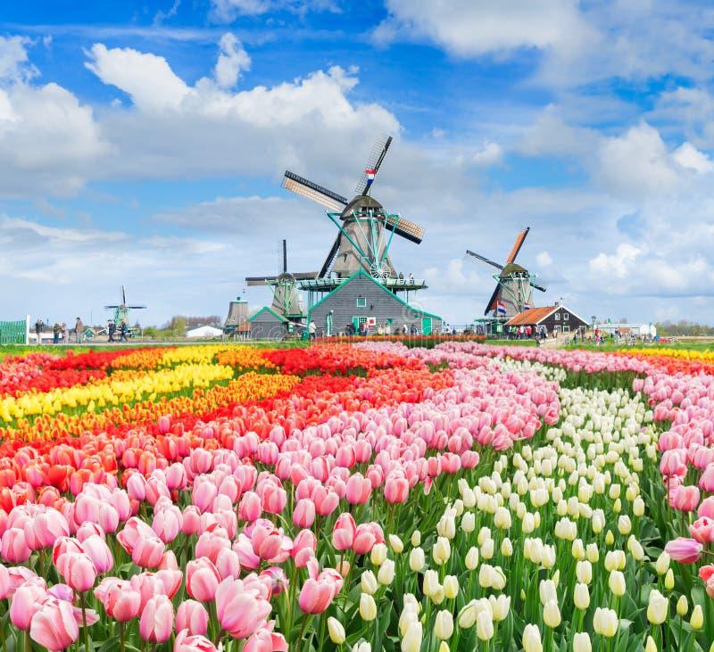 Голландские станы ветра стоковые изображения