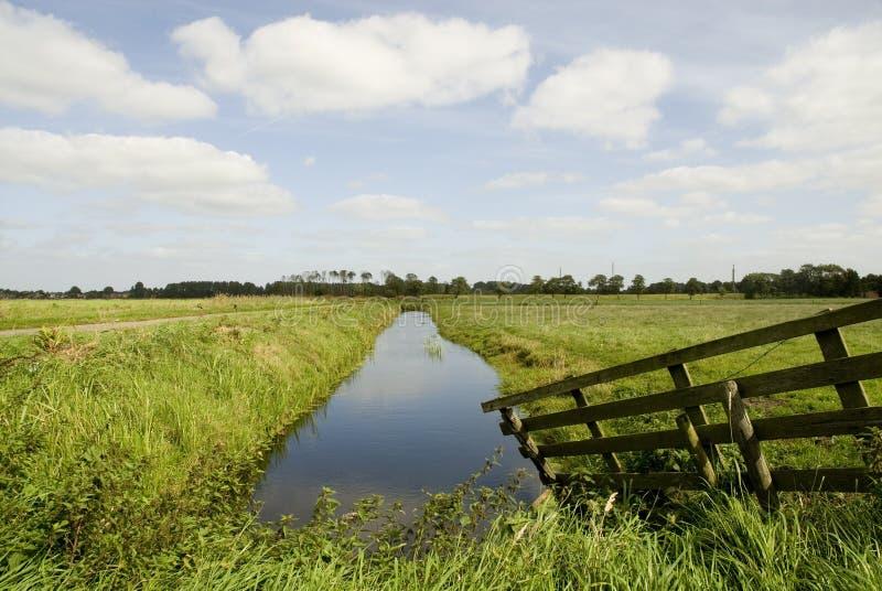голландский ландшафт стоковое фото rf