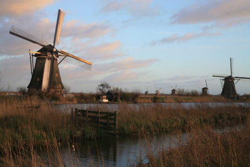 голландский ландшафт стоковое изображение rf