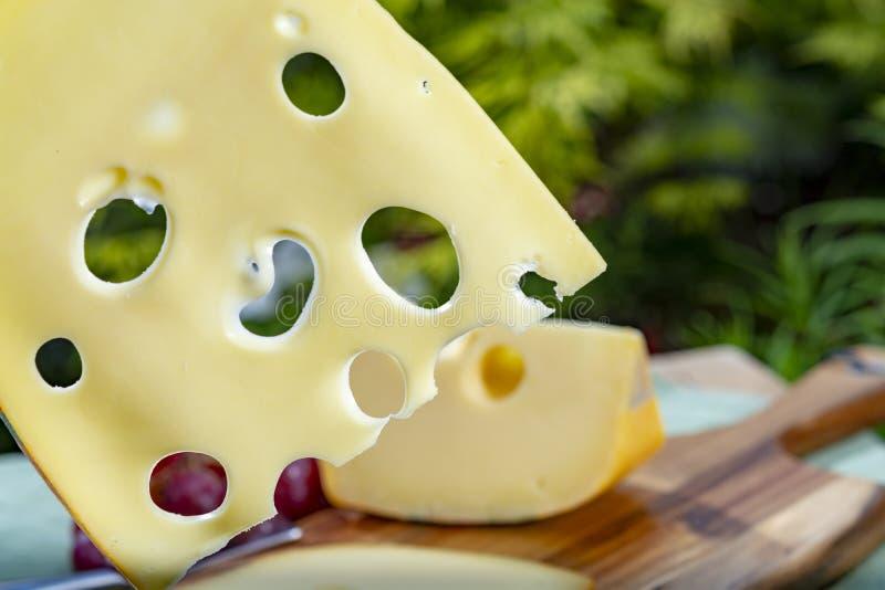 Голландский сыр с отверстиями, часть Maasdam трудный и отрезанный, служил на открытом воздухе в зеленом саде стоковое изображение