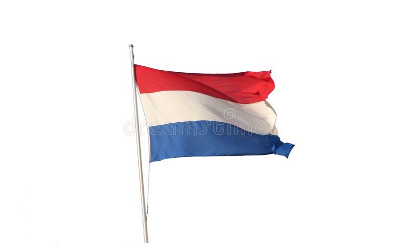 голландский флаг реальный стоковая фотография