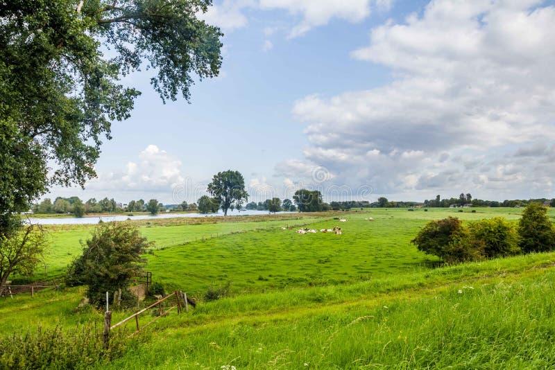 голландское река ландшафта стоковые изображения rf
