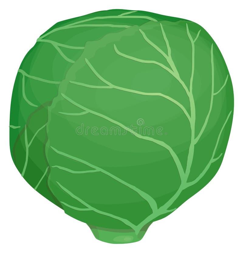 Голова капусты бесплатная иллюстрация