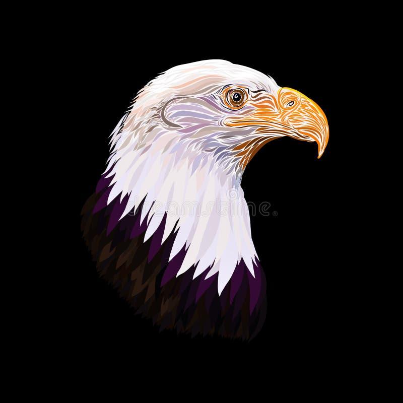 Голова красивого величественного орла на черной предпосылке иллюстрация штока