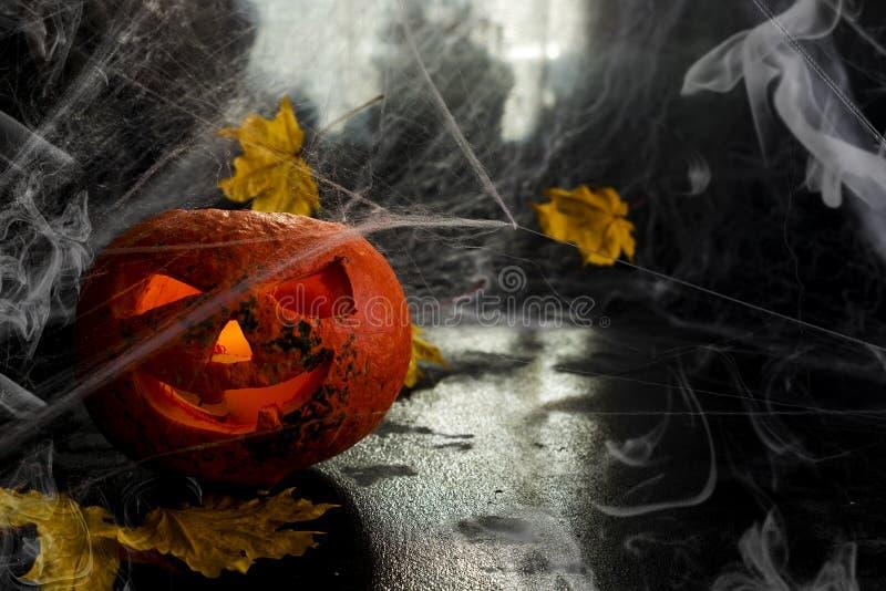 Голова тыквы хеллоуина S стоковые фото