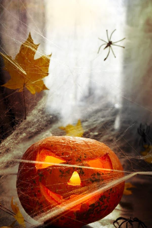 Голова тыквы хеллоуина S стоковое изображение