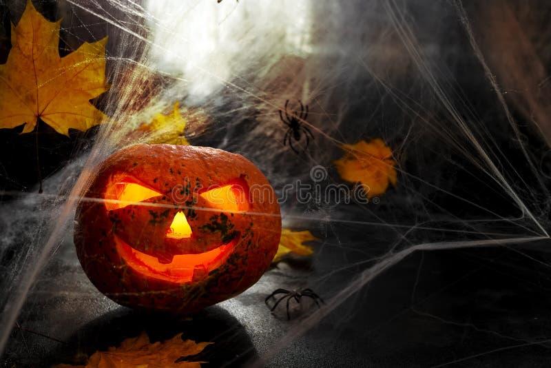 Голова тыквы хеллоуина S стоковые фотографии rf