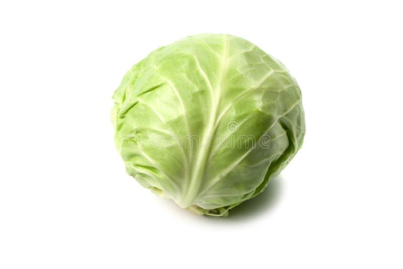 головка капусты зеленая стоковое изображение rf