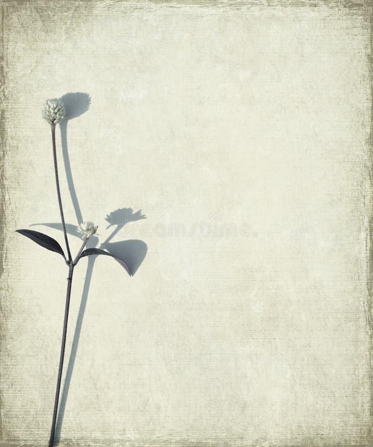 головки grunge предпосылки стержень семени голубой длинний стоковые фотографии rf